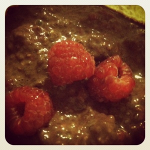 chocolate + raspberries + chia = amazingly delicious, healthy pudding!